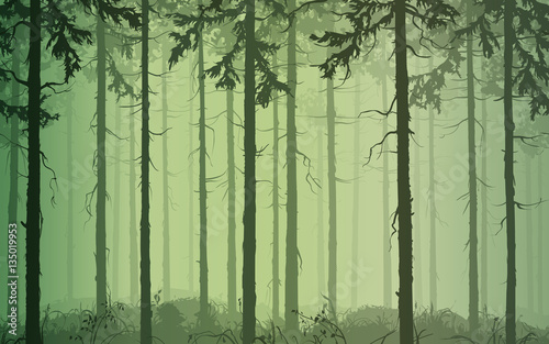 background seamless horizontal pine wood, green tones, vector illustration. It can be used as wallpaper in the interior