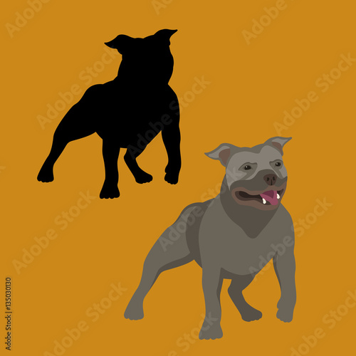 american bull terrier vector illustration style Flat set