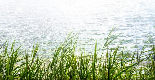 sunshine in water surface