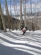 Lone skier weaves her way through bare winter aspens