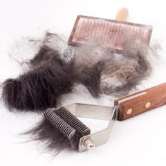 Dog grooming tool with animal fur