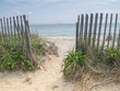 Path to the beach in Cape Cod