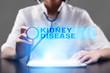 kidney disease. medical concept.
