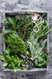 fresh herbs in wooden box on stone background - 135214361