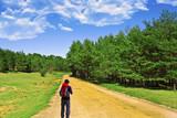 senderismo por el bosque