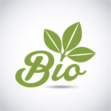 bio emblem with leaves icon over white background. colorful design. vector illustration