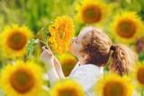 Joyful child smell sunflower in summer sunny day.