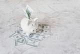 Piggy bank and dollars heap
