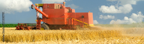 Harvester combine harvesting wheat on sunny summer day © prudkov