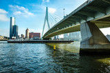 Erasmus Bridge.Erasmusbrug in Rotterdam, Netherlands