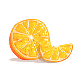 Half Of Orange Fruit And Orange Slice Next To It Cool Style Bright Illustration