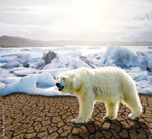 Foto op Canvas Antarctica Global warming