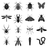 Insects set icons in black style. Big collection of insects vector symbol stock illustration