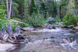 Tahoe Creek 15