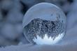 winterwald in kristallkugel, schweiz