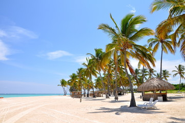 Palm trees, white sand and clear water on the tropical beach in Dominican Republic