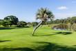 Golf Hole Green Flagstick Water