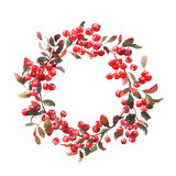 Watercolor wreath of rowan under snow isolated on white. Background for invitation. Winter.