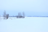 Зимний пейзаж средней полосы Россиии