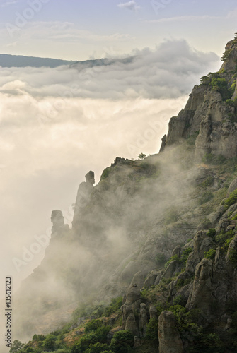 Mountain, forest and clouds. - 135612123