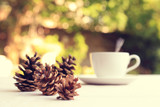 Pine cones on table, selective focus - 135623304