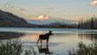 Moose standing in Montana mountain lake at dusk