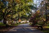A Warm day at Forsyth Park in Savannah, Georgia Shaded by Magnol
