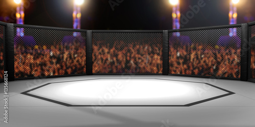 3D Rendered Illustration of an MMA, mixed martial arts, fighting cage arena.