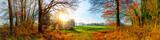 Panorama einer Landschaft im Herbst mit Wald, Wiese und Sonne