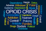 Opioid Crisis Word Cloud - 135700131