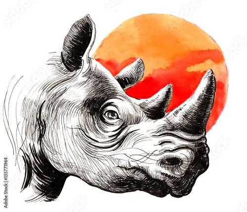 Rhinoceros and sun - 135771964
