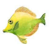 Watercolor green fish