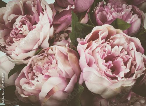 Vintage peony flowers background. - 135780907