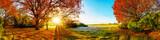 Idyllische Landschaft im Herbst mit Wald, Wiese und Sonne