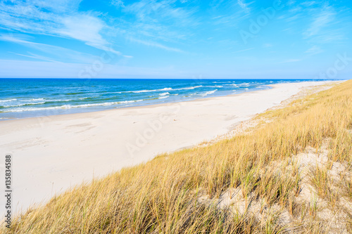 White sand and grass dune on Debki beach, Baltic Sea, Poland - 135834588