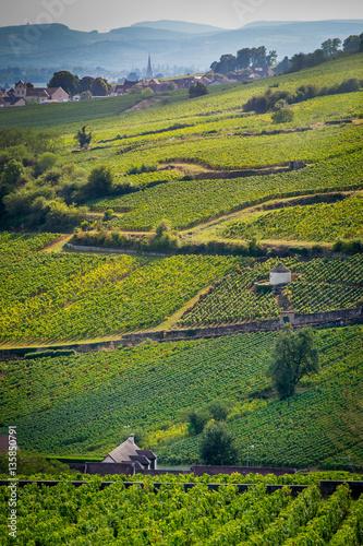 Sticker climats de Bourgogne