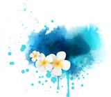 Fototapety Abstract background with plumeria flowers