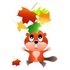Beaver, throwing leaves
