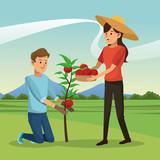 couple picked tomato tree basket landscape vector illustration eps 10