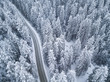 aerial view of snow covered pine forest