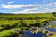 Wicklow Mountains - River Liffey - 135879562