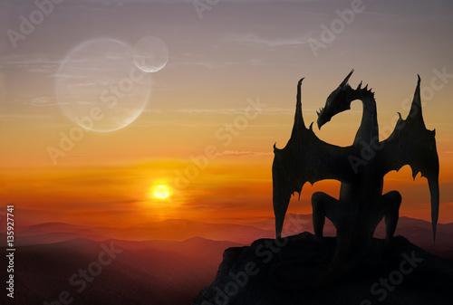 Foto op Plexiglas Draken Dragon on a stone