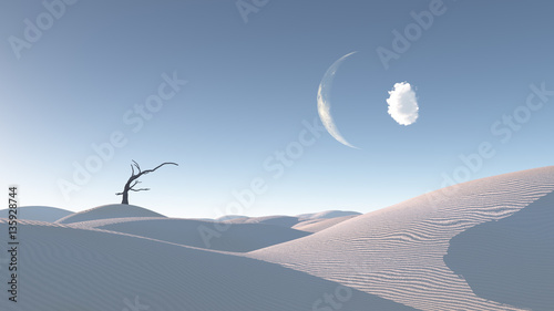 Fotobehang Zen Stenen Withered tree in Zen Inspired Desert Landscape