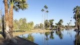 Reflections in Encanto Park Lake, Phoenix, AZ