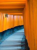 Red Tori Gate at Fushimi Inari Shrine in Kyoto