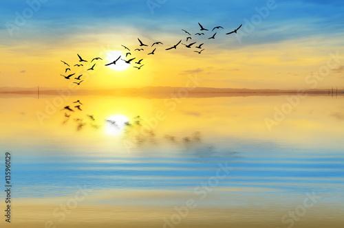 Foto op Plexiglas Zwavel geel fondo de naturaleza