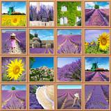 collage di foto della provenza e dei campi di lavanda