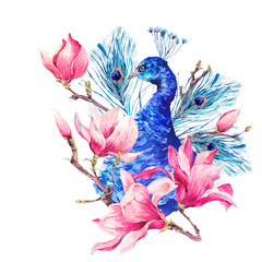 Watercolor Peacock with Flowers Magnolia
