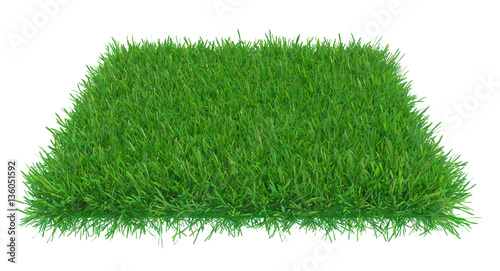 Foto op Aluminium Groene green grass field isolated on white background. 3d rendering