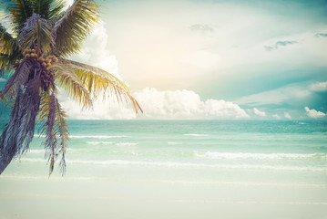 Vintage tropical beach (seascape) with palm tree in summer. Landscape of coast. vintage effect color tone.